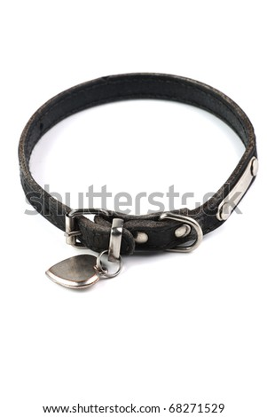 old and dirty dogs collar