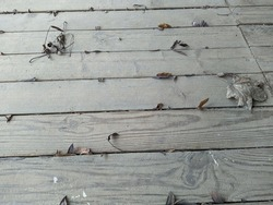 old and dusty wood floor with dry wood leaves