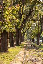 Old and neglected tram track, on a tramway line of szeged, Hungary, with grass growing and trees around. The railway line is in poor condition due to neglected maintenance.