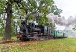 Old and vintage steam train with little green coaches near a large green tree, a railway in the garden. Beautiful landscape and tourist train with unique steam loco like a fairy tale with much smoke