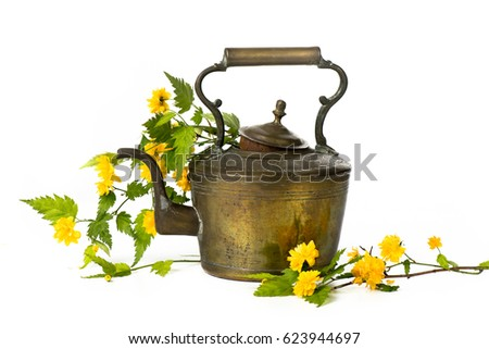Old antique brass teapot on white background isolated with wild flowers