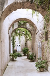 Old arcade, corridor and flowers in the pots