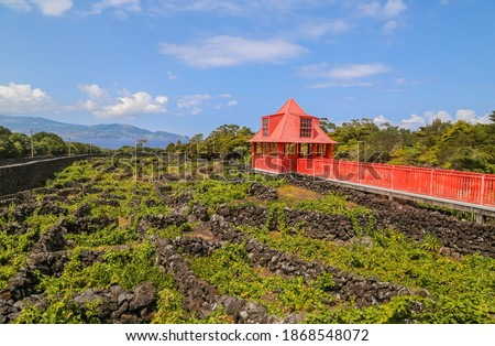 Old Architecture otside the Pico Wine Museum in the Azores Island of Pico, Portugal Foto stock ©