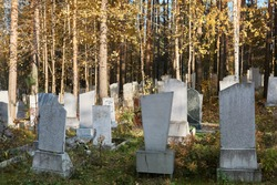 old autumn cemetery with stone gravestones overgrown with trees