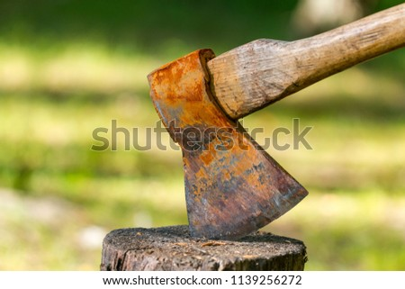 Old ax against a background of green grass