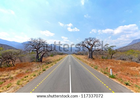 Old Baobab Trees along straight road with Mountains in the Background
