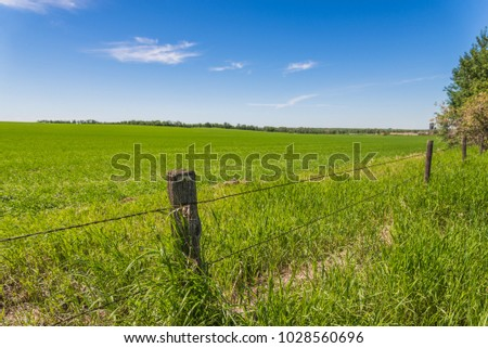 old barbed wire fence and a...