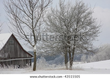 old barn against frosty trees