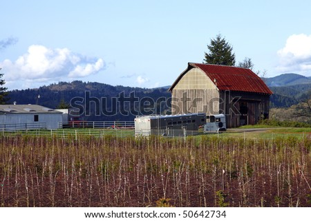 Old barn & field.