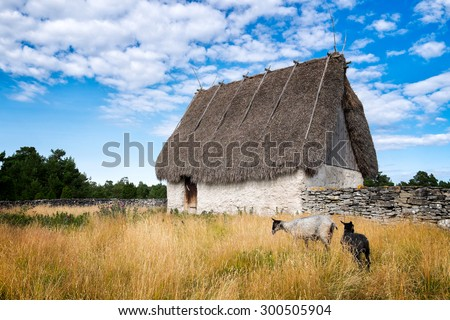 old barn with a thatched roof....