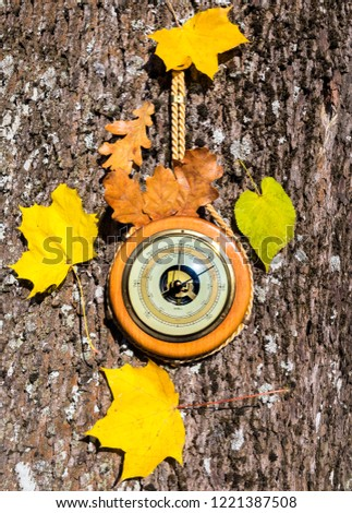Old barometer, autumnal leaves all are on textured wooden surface  Concept of forecasting. Translations from German to English are: sturm is storm; veranderlich is changeable; schone is enjoyable   #1221387508