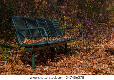 Old bench in the autumn park. On and around the bench are yellow autumn leaves. #347456378