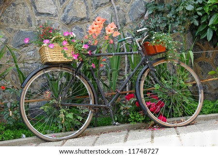 Old bicycle decorated with flowers in the garden