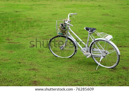 Old bicycle on green grass