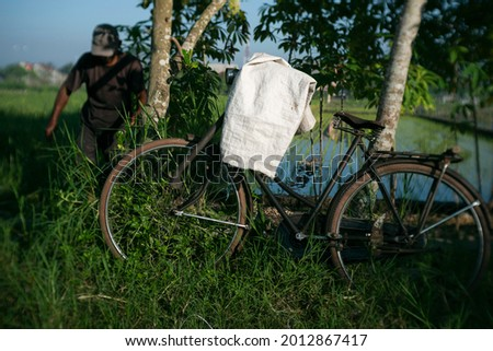 old bicycle parked near the rice field ストックフォト ©
