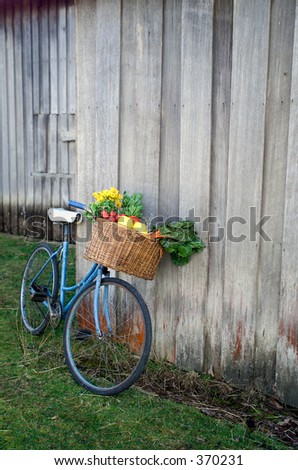 Old Bicycle with basket full of fresh vegetables