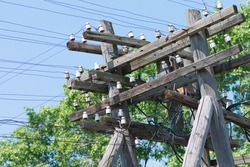 Old big wooden electric pole. Electricity supply to villages. Power line, close-up against the blue sky, view from below.