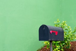 old black mailbox with green background and a bush at the bottom right