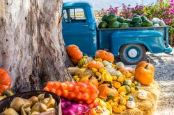 Old blue truck with fresh vegetables and fruit harvest parked next to tree