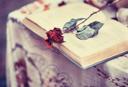 Old book, and a dried red rose, vintage, loneliness, memories, romance, historical romance, closeup