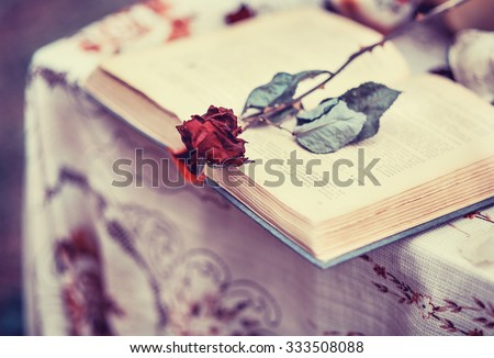 Shutterstock Old book, and a dried red rose, vintage, loneliness, memories, romance, historical romance, closeup