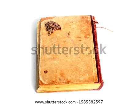 old book and a gold chain with a cross #1535582597