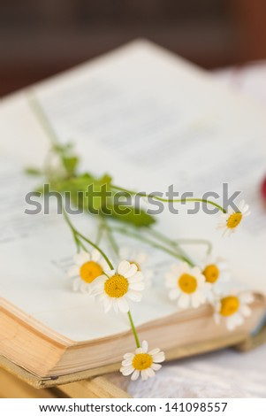 Old book and daises