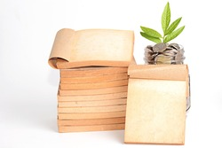 Old Book and Money with growing sprout in glass jar on white background.