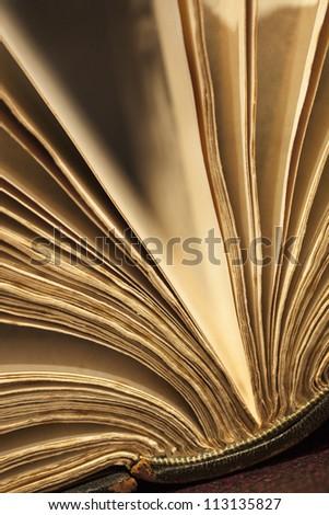 Old book fanned open.  Warm light, shallow depth of field.