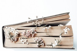 Old book with field flowers as bookmarks isolated on white background. Photo