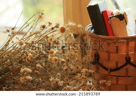 http://www.shutterstock.com/ru/pic-215893789/stock-photo-old-books-of-dried-daisy-flowers-retro-basket.html?src=jbJfCWTgnY9_1XyC6aDsVA-1-4