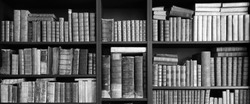 old books on wooden shelf in black and white
