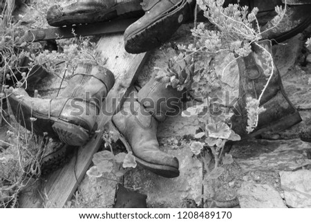old boots used as planters