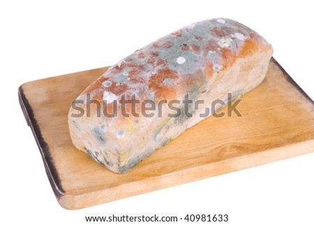[Obrazek: stock-photo-old-bread-with-foul-mold-on-...981633.jpg]