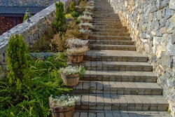 Old brick stairway, beautiful for walking on next to plants and nature, climbing stairs made of rock or cement, outdoor decoration ideas