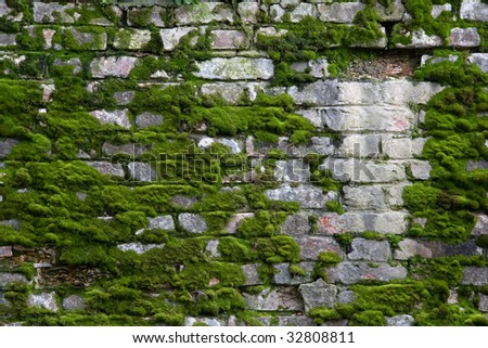 Old Brick Wall with Moss
