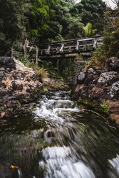 Old bridge in the middle of jungle, beautiful scenery.