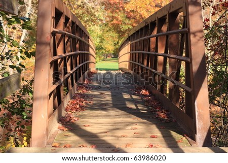 Old Bridge with Fall Leaves