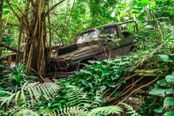 Old broken used empty shabby dirty military khaki jeep crashed into a tree in jungle with green fresh tropical trees and bushes at daytime. Transport and wild nature concept