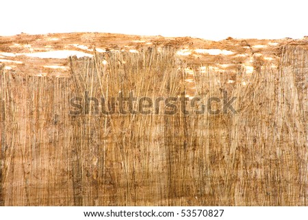 Old brown papyrus texture close up with border