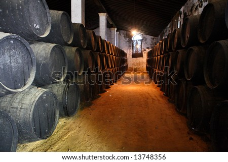 old brown wooden barrels of sherry in bodega of Spanish town of Jerez de la Frontera