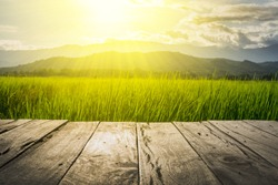 old brown wooden floor beside green rice field in the evening and beam sunset