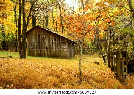 old building in the woods during the fall of the year.