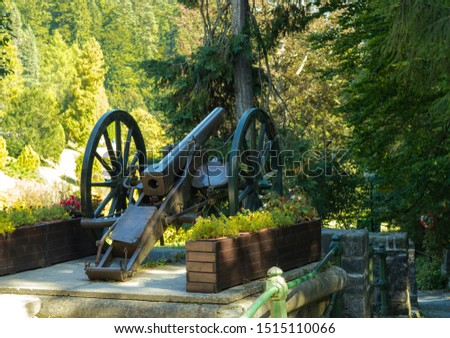 old cannon, cannon exposed, cannon on wheels, American Civil War #1515110066