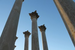 Old Capitol building columns in the National Arboretum