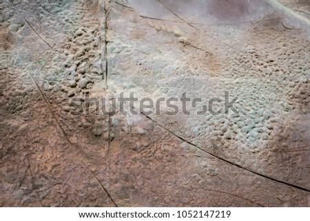 Old cast iron door texture #1052147219