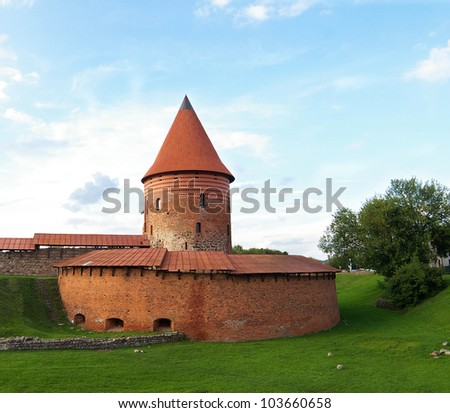 Old castle .Lithuania