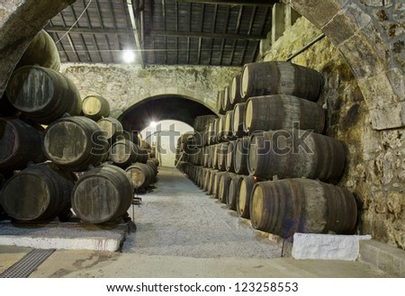 old cellar with rows of wooden barrels