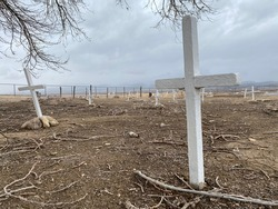 Old cemetery with white crosses as headstones