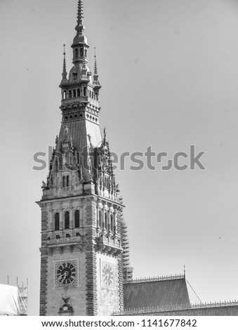 Old City Hall on Rathausmarkt in Hamburg on a beautiful day - Germany. #1141677842